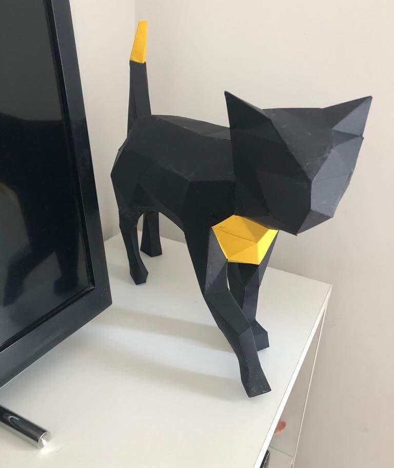 Gato preto e amarelo em cima de uma mesa