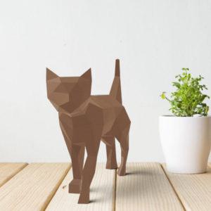 gato marrom