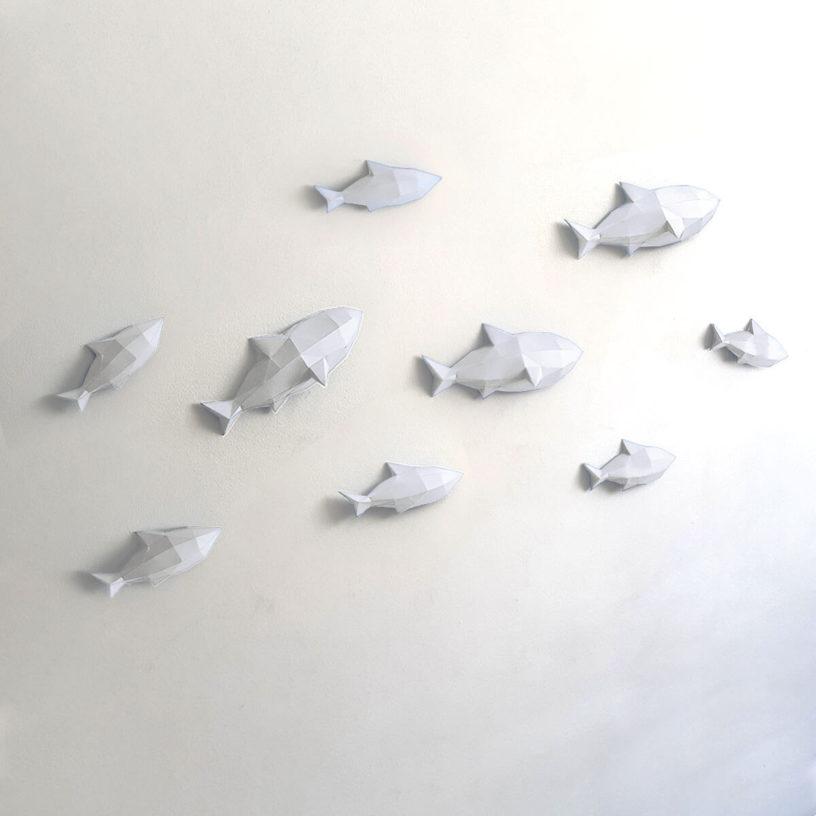 Peixes brancos