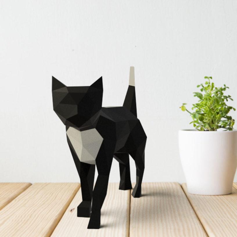 gato preto amarelo