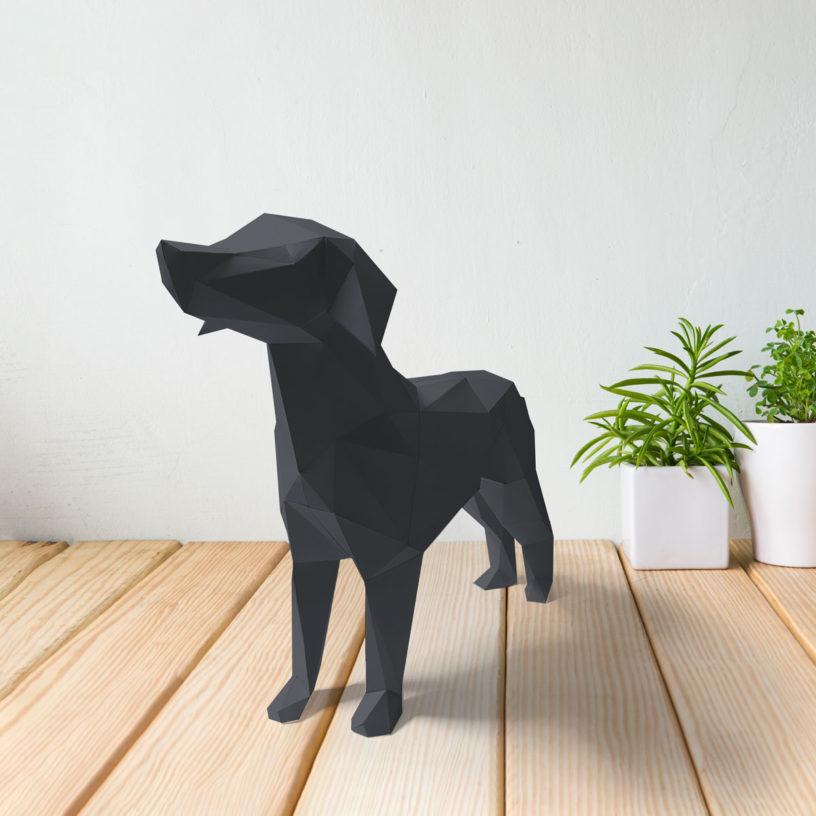 Cachorro cinza